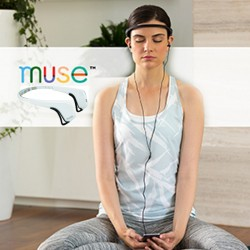 Muse headband White